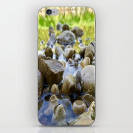 Stuck Between a Rock and a Wet Place iPhone Skin