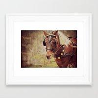 pony Framed Art Prints featuring Pony by KimberosePhotography