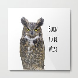 Born to be Wise Owl Metal Print