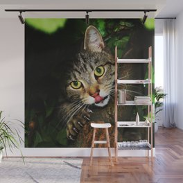 Cat licking nose hunting prey extending claws sitting on tree predator cat Wall Mural