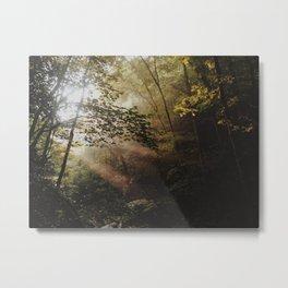 Sun Beams on an Autumn Morning Metal Print