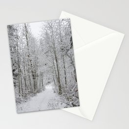 Snow Covered Trees Line The Path Stationery Cards