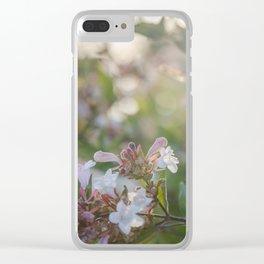 Treasured Walks Clear iPhone Case