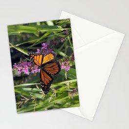 Monarch Splendor Stationery Cards
