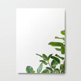 Minimalist Mid Century Abstract Houseplant Green Leaves Fig Tree Metal Print