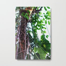 tree suffocating Metal Print