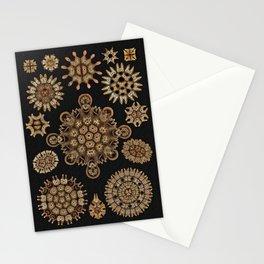 Golden Tinted Melethallia on Black Stationery Cards