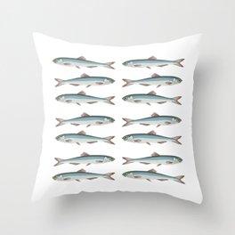 European sardines a school of fish in a row Throw Pillow