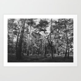 Time spent amongst trees is never time wasted Art Print