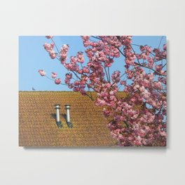 Roof in spring finery Metal Print