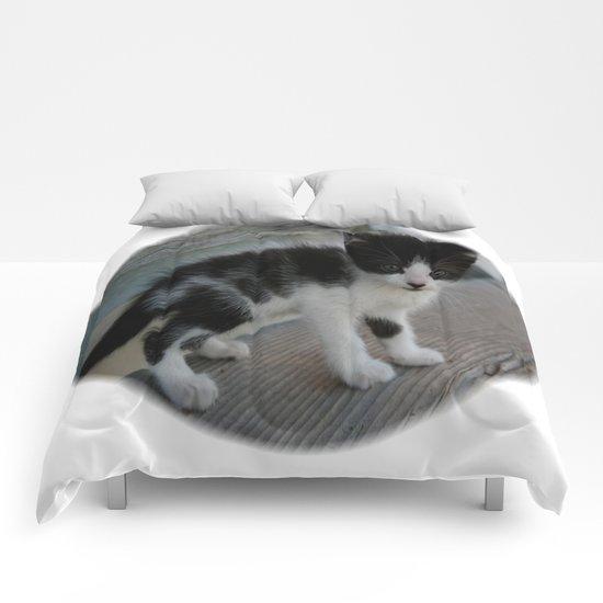 Spot's Big Adventure Comforters