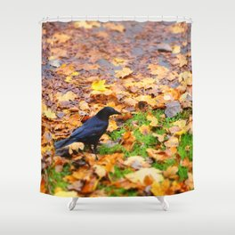 Corbeau d'automne. Shower Curtain