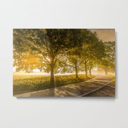 Rural Idyllic Country Road Sunset Metal Print