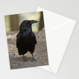 Raven - Yellowstone National Park, Wyoming Stationery Cards