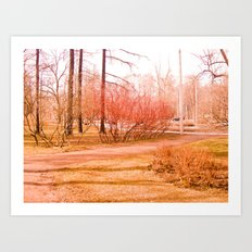 The Red branches. Art Print