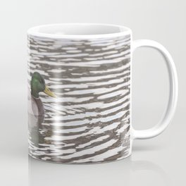 Mallard swimming Coffee Mug