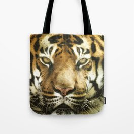 Face of Tiger Tote Bag