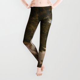 "Sir Anthony van Dyck ""Cupid and Psyche"" Leggings"