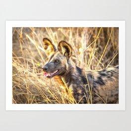 Alert African Wild Dog Art Print