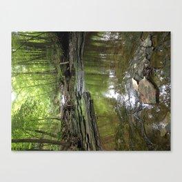 Mossy Wood Canvas Print