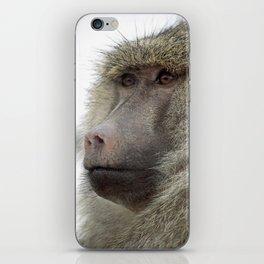 Baboon iPhone Skin