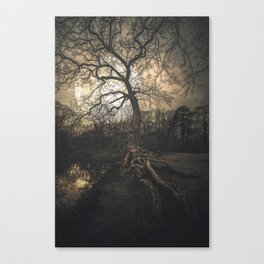 Epping Forest, London - United Kingdom Canvas Print