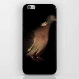 Woodpigeon Portrait iPhone Skin