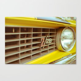 Z28-Grill Canvas Print