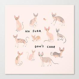 Sphyinx Cats Canvas Print