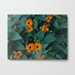 colombian flowers Metal Print