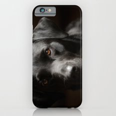 Black Labrador   Slim Case iPhone 6