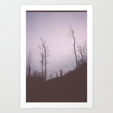 These trees still stand tall Art Print