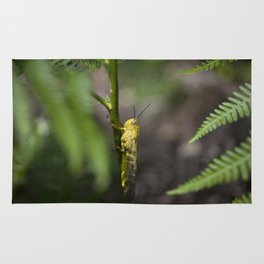 Yellow grasshopper Rug