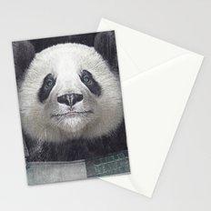 Billy Bob Panda Stationery Cards