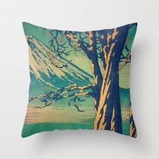 Late Hues at Hinsei Throw Pillow