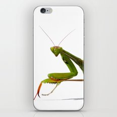 Mantis iPhone & iPod Skin