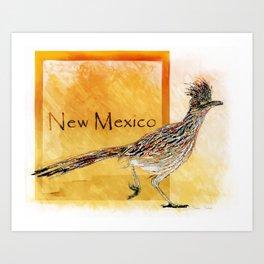 Roadrunner Of New Mexico-Barbara Chichester Art Print