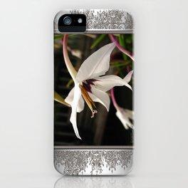 Peacock Gladiolus iPhone Case