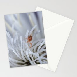 Clover Mite on a clematis Stationery Cards