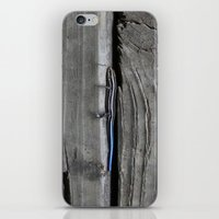 lizard iPhone & iPod Skins featuring Lizard by Veronica Ventress