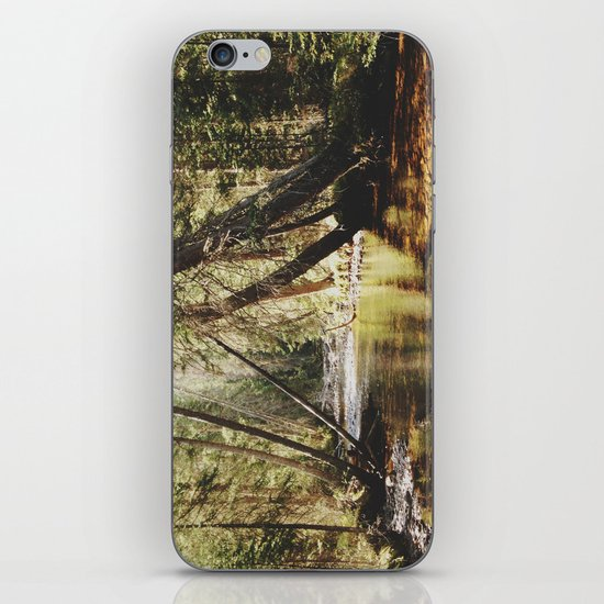 East Inlet Creek iPhone & iPod Skin