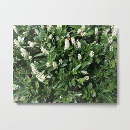 green/white Metal Print