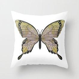 aubergine limelight swallowtail (Papilio linta) Throw Pillow