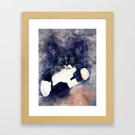 cat jagoda Framed Art Print