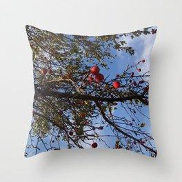 Cranberries & Sky Throw Pillow