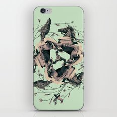 Horses and birds iPhone & iPod Skin