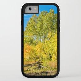 Aspen Splendor iPhone Case