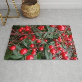 Winter Berries 8x12 Rug
