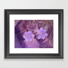 Purple Spring Flowers Framed Art Print