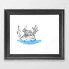 Rabbit in an island Framed Art Print